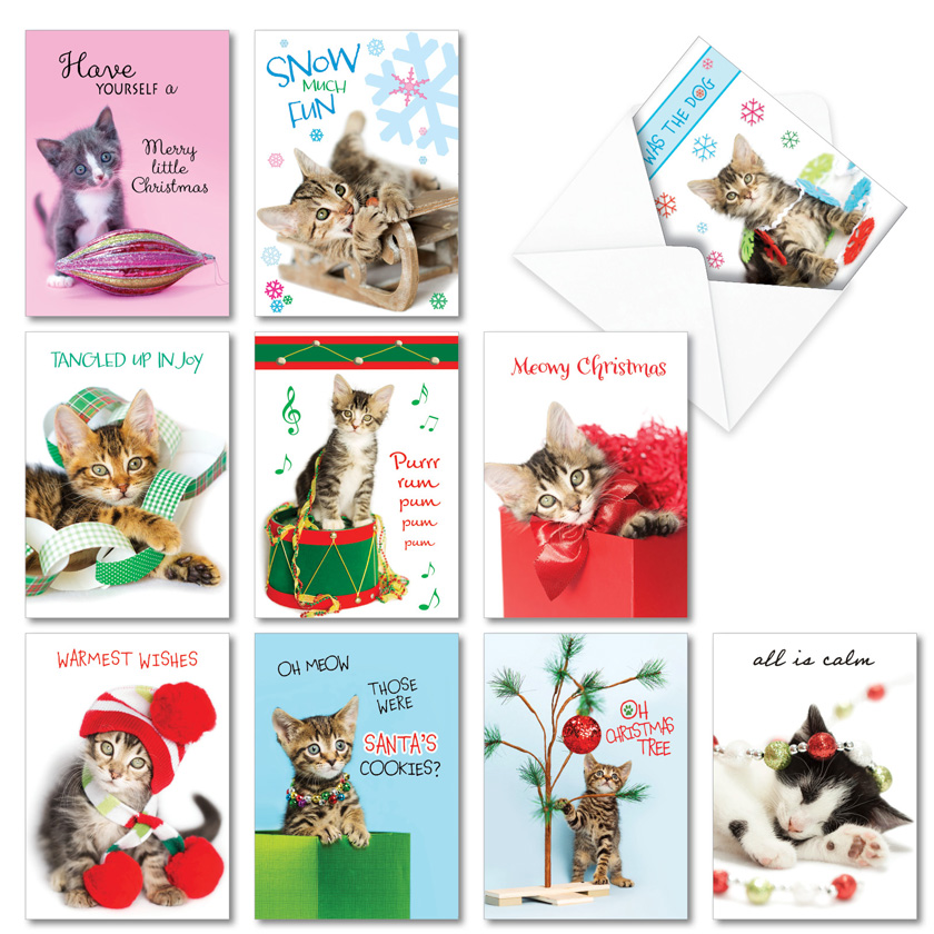 Meowy Holidays: Funny Merry Christmas Assorted Set of 10 Cards