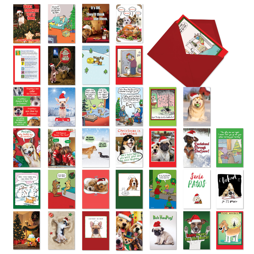 Dog Holly Days: Humorous Merry Christmas Assorted Set of 36 Cards