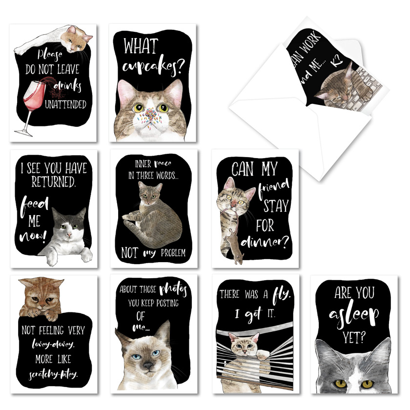Cat Antics: Funny All Occasions Blank Assorted Set of 10 Cards