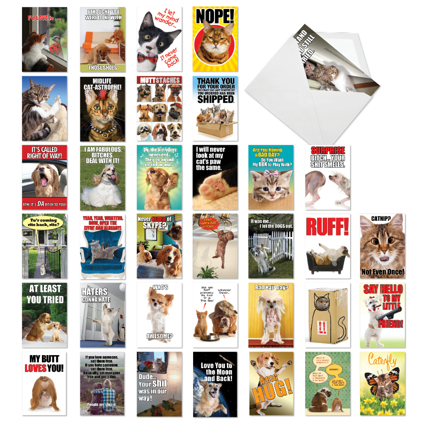 Best Pets Collection: Hilarious All Occasions Blank Assortment of 36 Cards