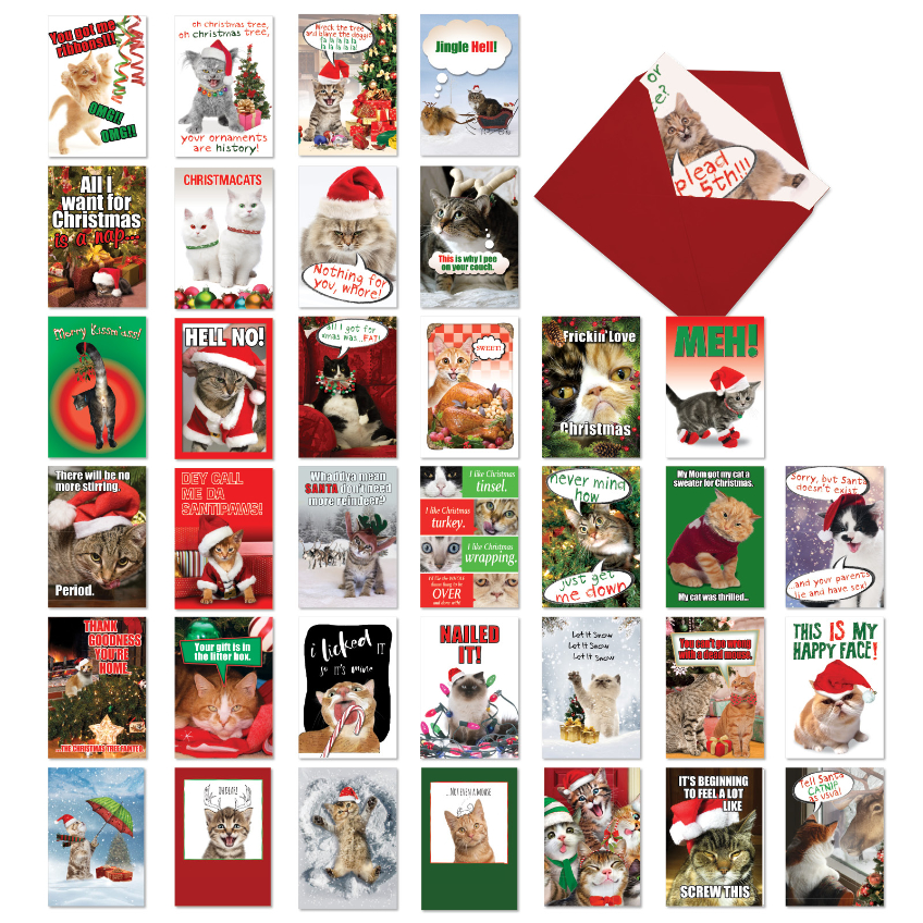 Christmas Kitties Collection: Hysterical Merry Christmas Mixed Set of 36 Cards
