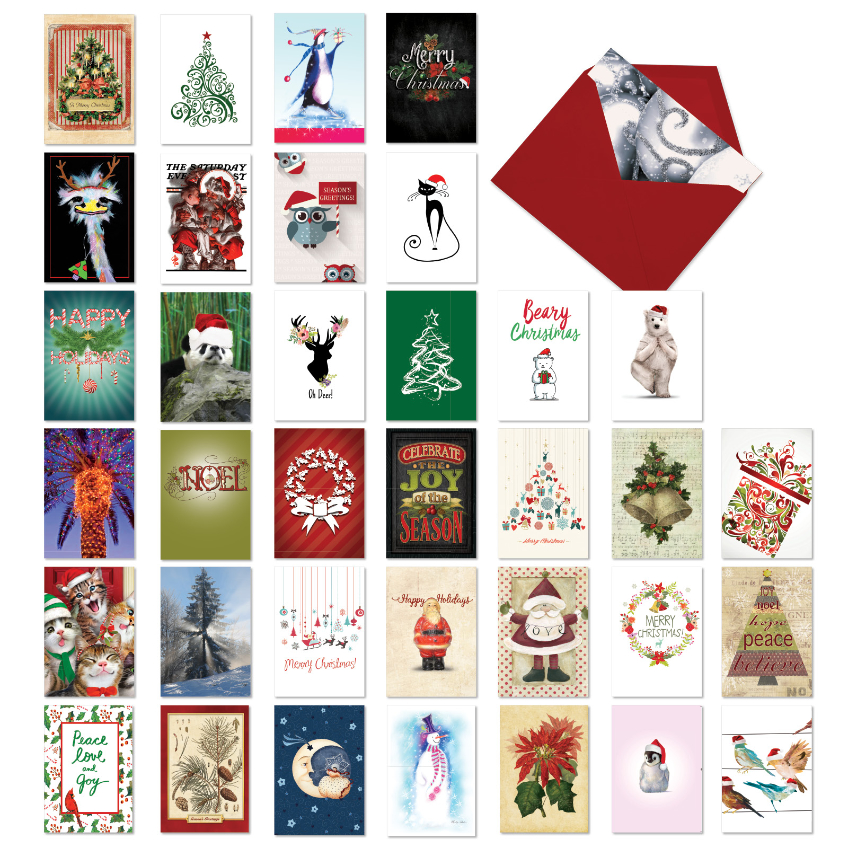 Season's Best: Stylish Merry Christmas Assortment of 36 Cards