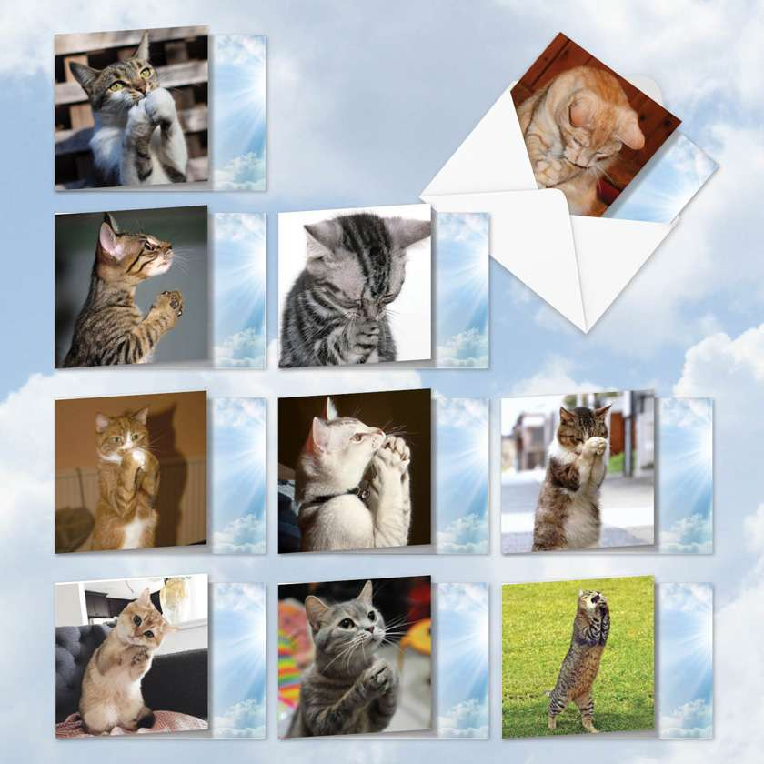 Paws And Prayers: Humorous Mixed Occasions Mixed Set of 10 Cards