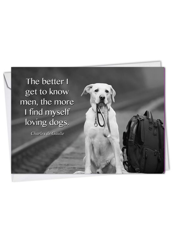 Canine Comments: Stylish Blank Greeting Card