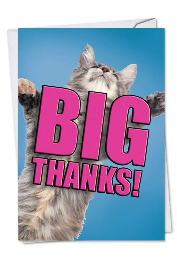 Cat Big Thanks: Creative Thank You Paper Card