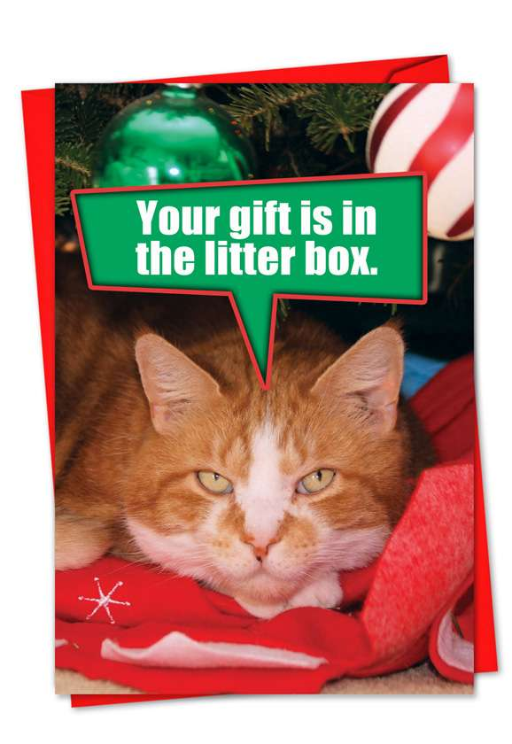 Litter Box Gift: Hilarious Christmas Paper Greeting Card