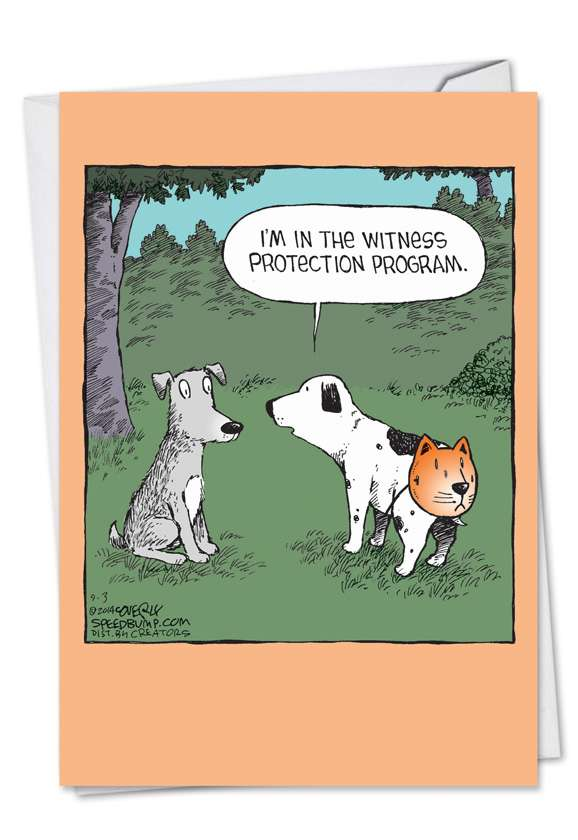Dog Witness Protection Program: Hilarious Birthday Printed Greeting Card