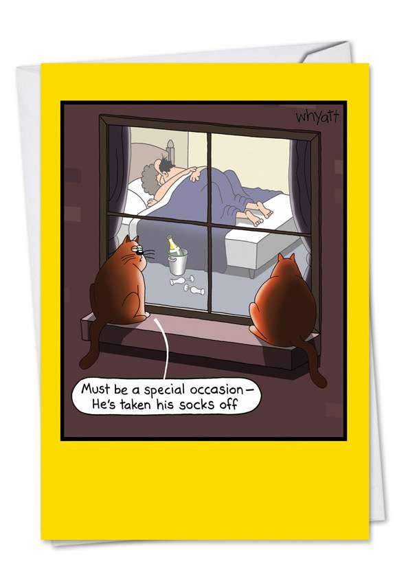 Special Occasion Sex: Hilarious Birthday Printed Card