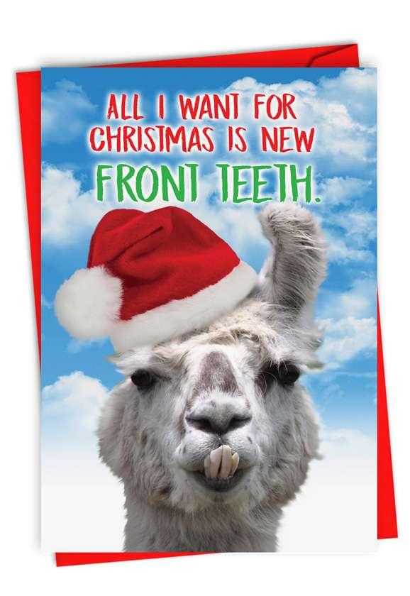 Llama Front Teeth: Stylish Merry Christmas Card