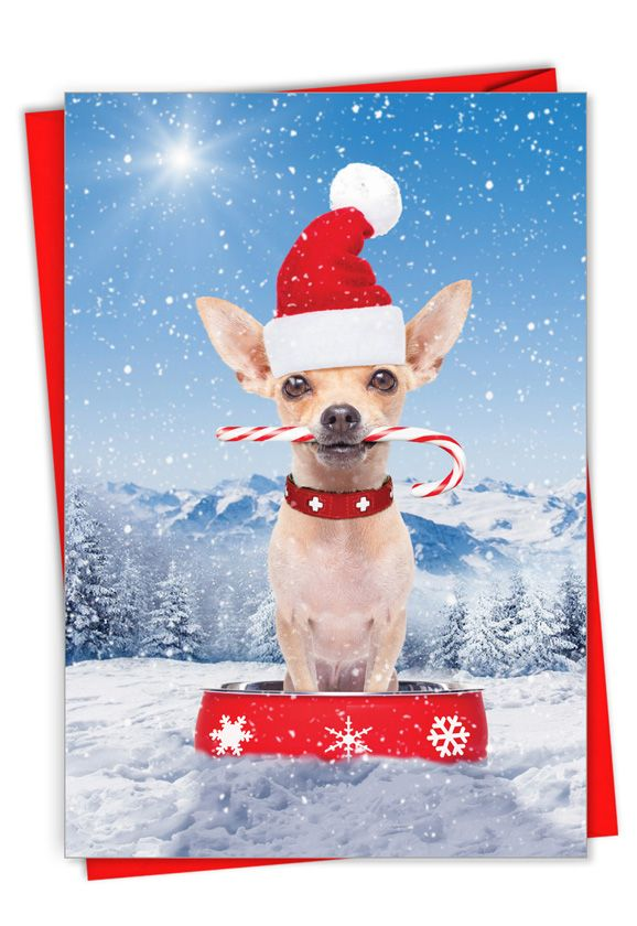 Canine Antics: Creative Merry Christmas Greeting Card
