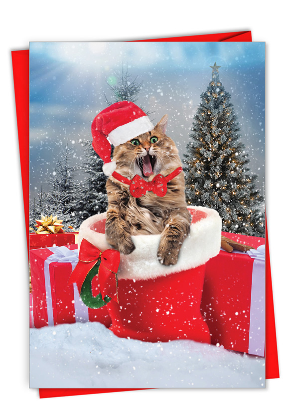 Cats Antics: Creative Merry Christmas Printed Card