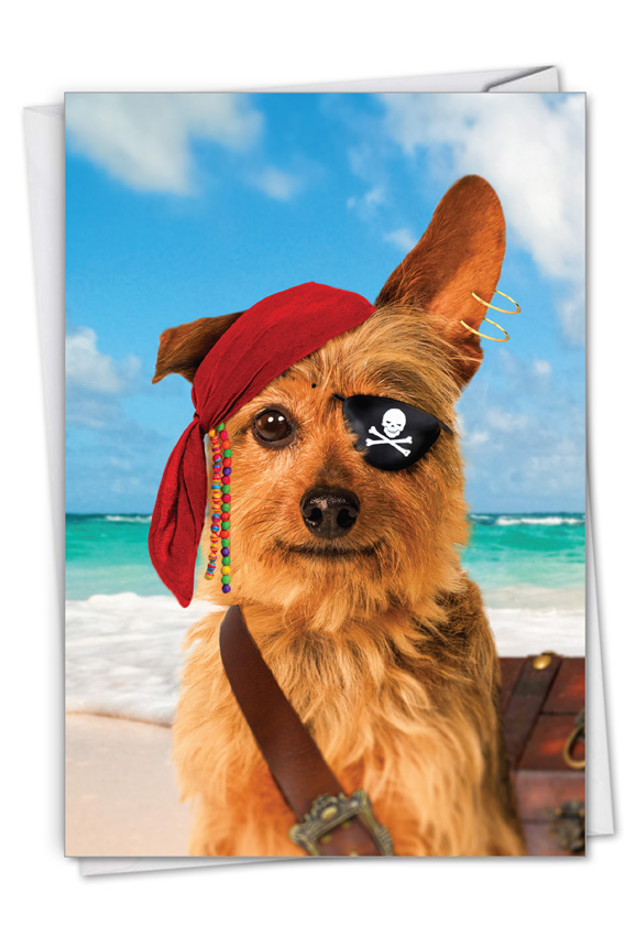 Pirate Dog: Hysterical Birthday Greeting Card