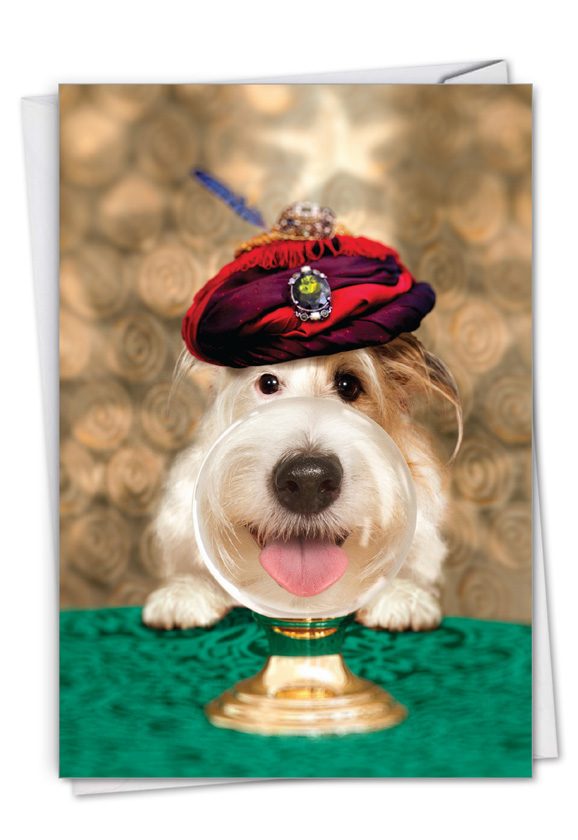 Dog Psychic: Humorous Birthday Paper Greeting Card