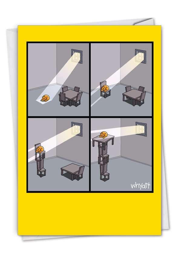 Cat Light: Humorous Congratulations Card