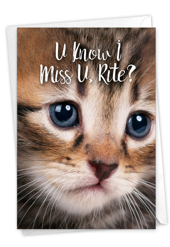 Miss U Kitties: Stylish Miss You Card