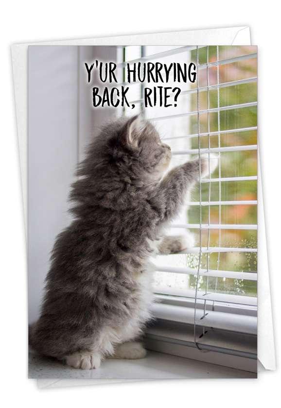 Miss U Kitties: Creative Miss You Greeting Card