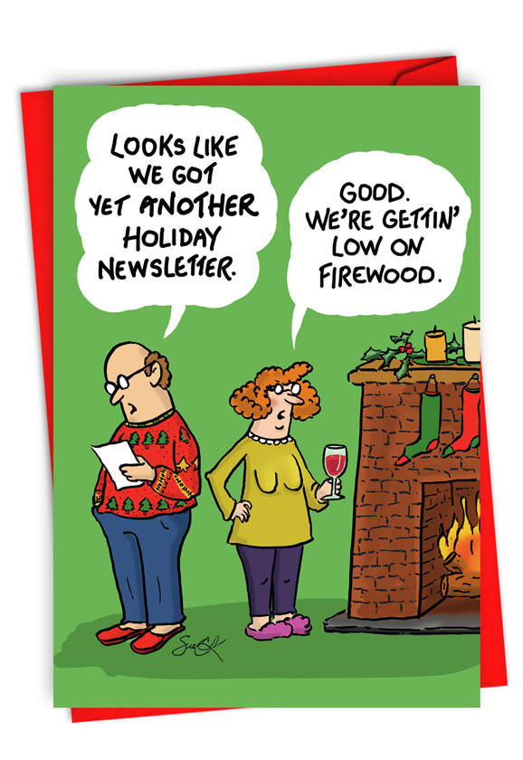 Holiday Newsletter: Humorous Merry Christmas Card