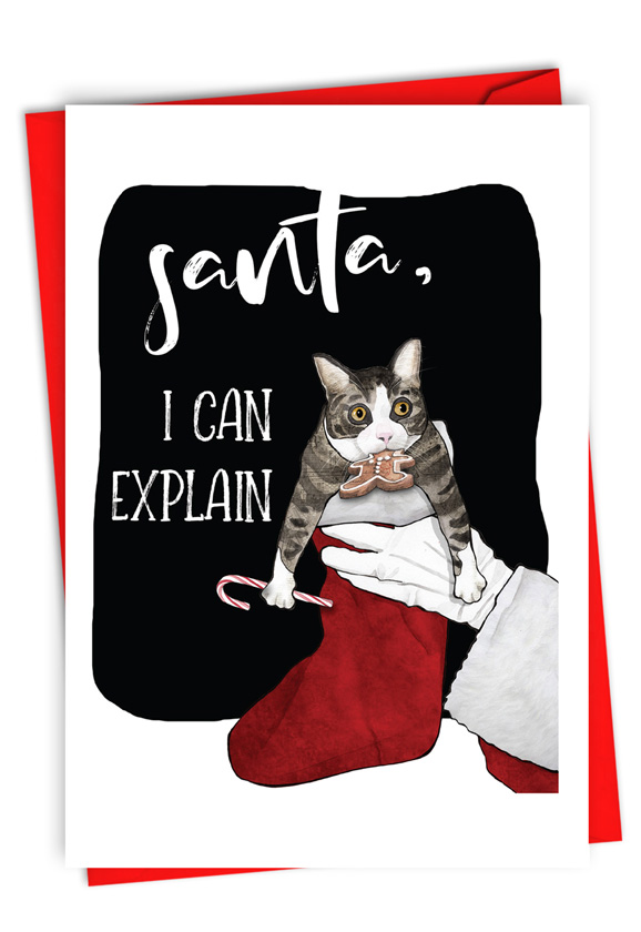 Cat Explanation: Humorous Merry Christmas Paper Greeting Card