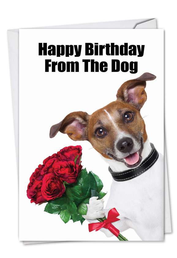 Birthday From The Dog: Hilarious Birthday Paper Greeting Card