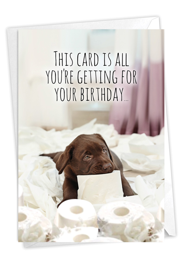Life Savings: Funny Birthday Card