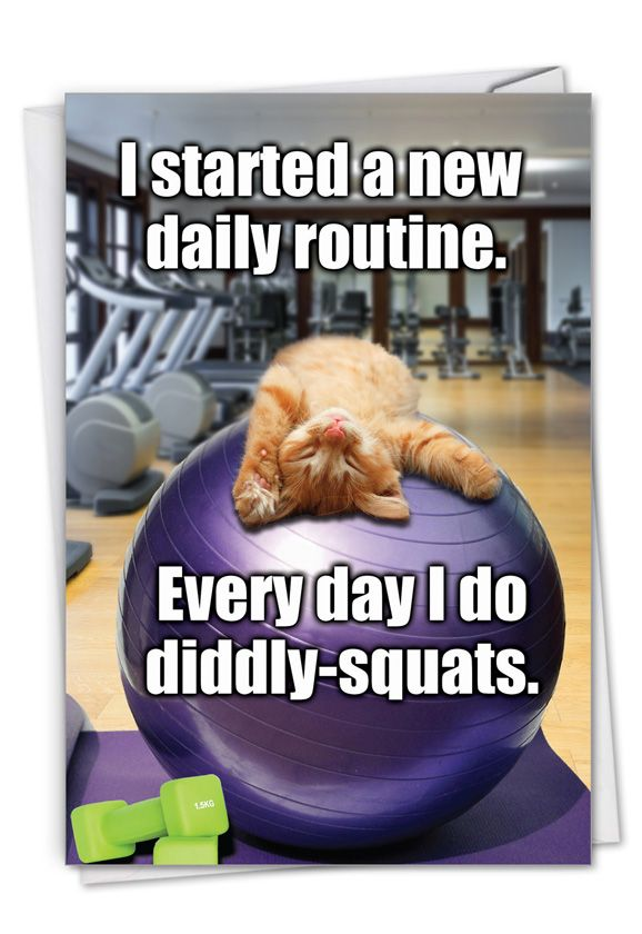Diddly Squats: Hilarious Retirement Printed Greeting Card