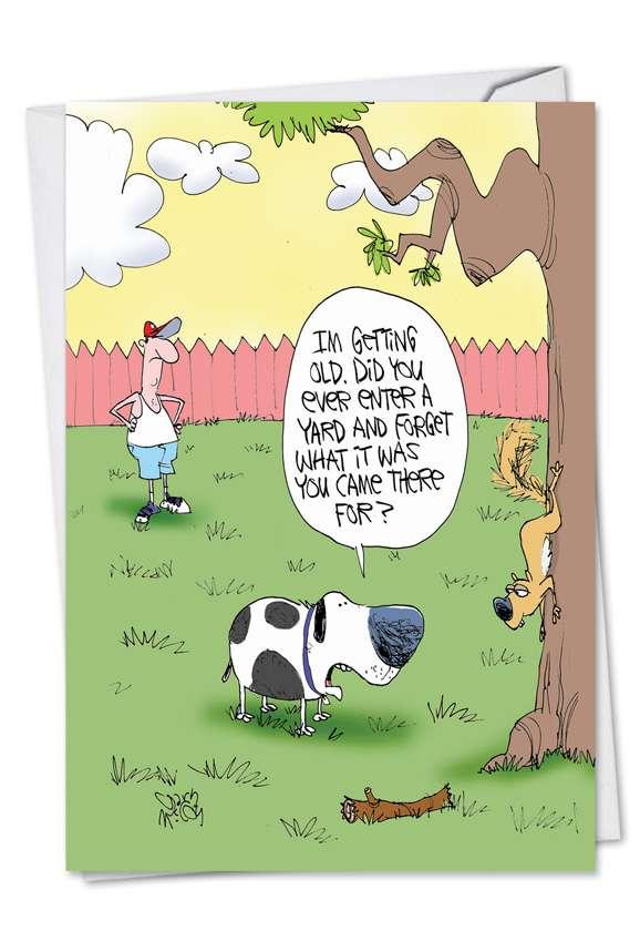 Old Dog: Funny Birthday Printed Card