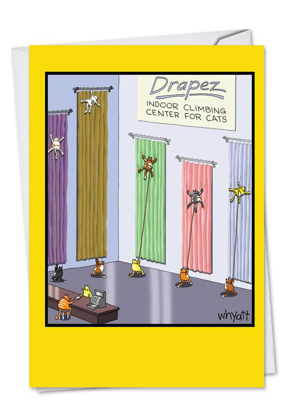 Cat Climbing Center Card