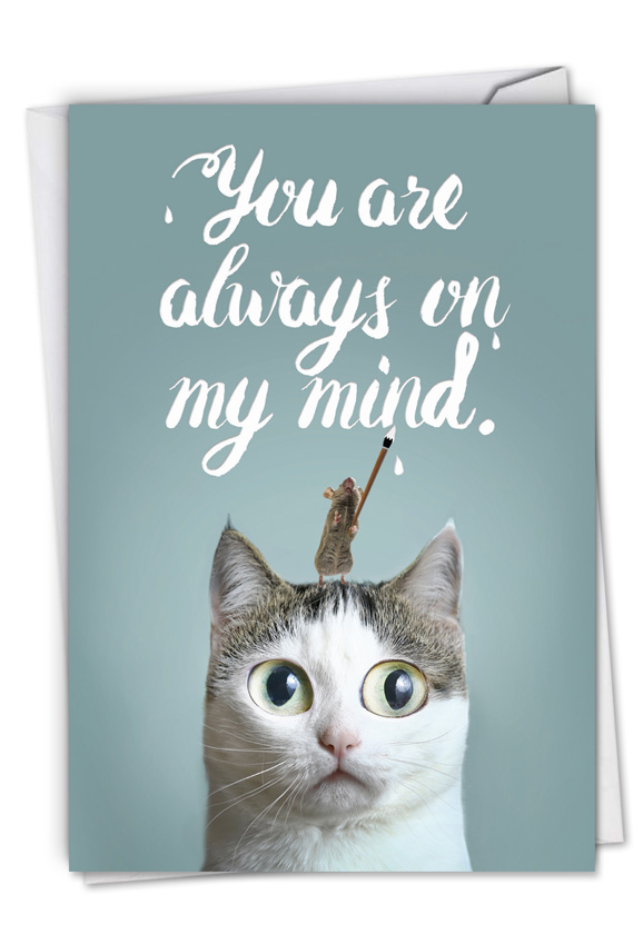 Cat-Sent Greetings: Stylish Miss You Card