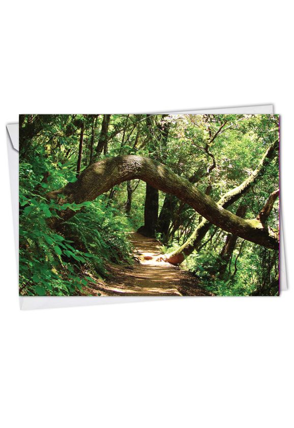 Nature Trails: Creative Thank You Paper Greeting Card