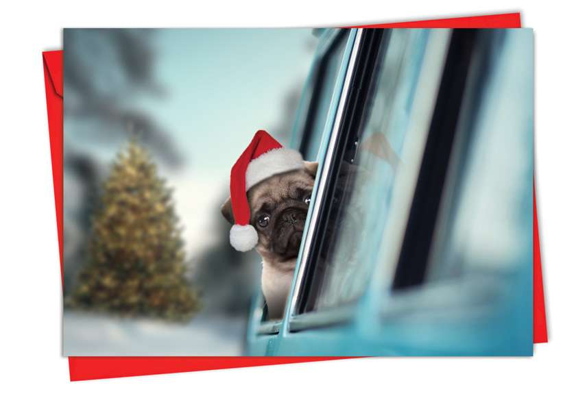 Holiday Doggie in the Window: Stylish Christmas Paper Card