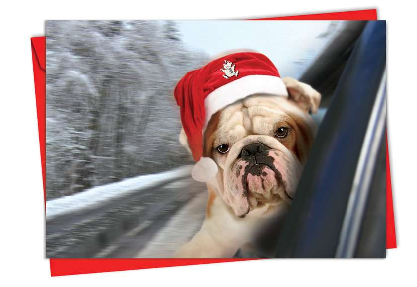 Holiday Doggie in the Window: Stylish Christmas Printed Card