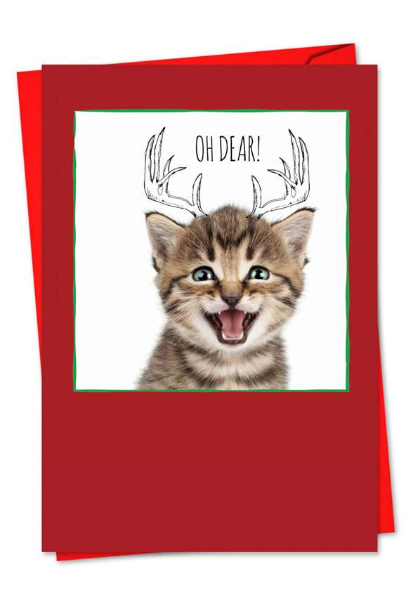 Cats & Doodles: Stylish Christmas Paper Greeting Card