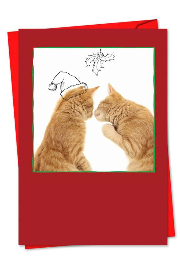 Cats & Doodles: Creative Christmas Printed Greeting Card