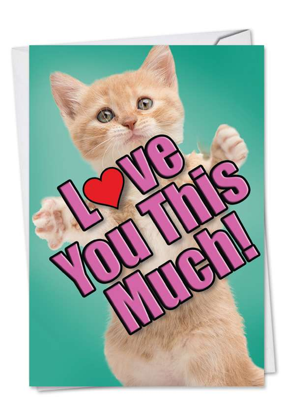 Cat Love You This Much: Creative Mother's Day Printed Card