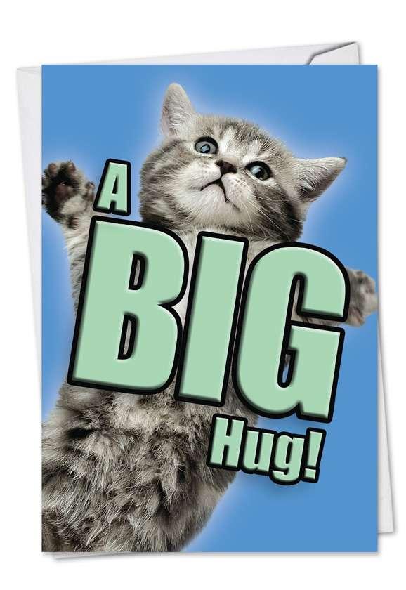 Cat A Big Hug: Creative Get Well Paper Card
