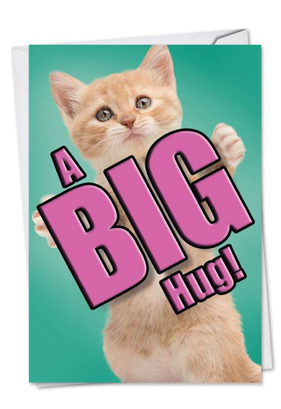 Cat A Big Hug: Stylish Miss You Greeting Card