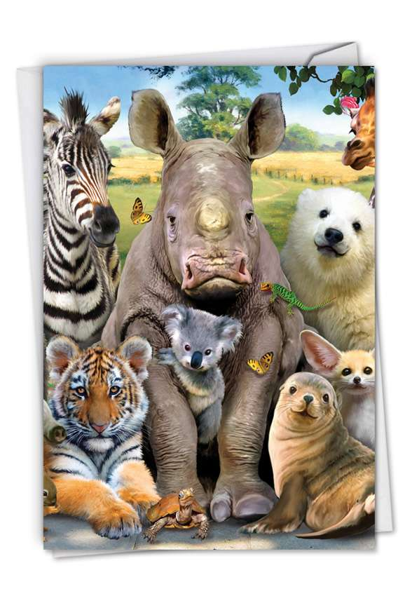 Here's Looking At Zoo: Stylish Get Well Card
