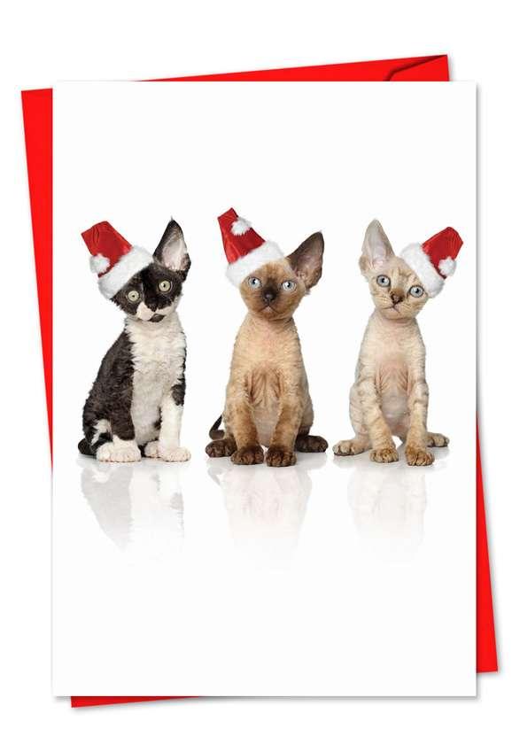 Santa Cats: Stylish Christmas Paper Greeting Card