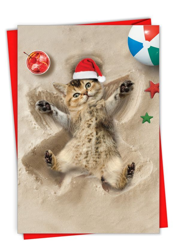 Holiday Sand Angels - Cat: Creative Merry Christmas Greeting Card