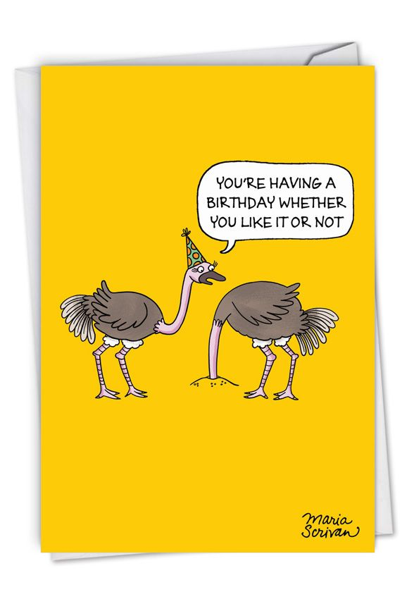 Ostrich Party: Humorous Birthday Card