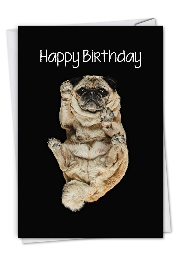 Big Under Dogs - Pug: Creative Birthday Printed Greeting Card