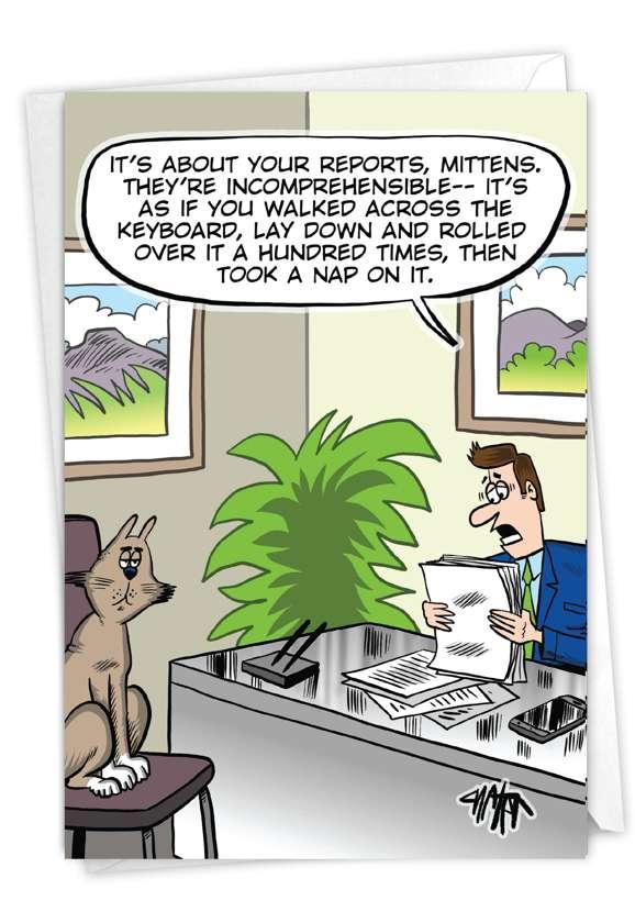 Catnap Reports Card