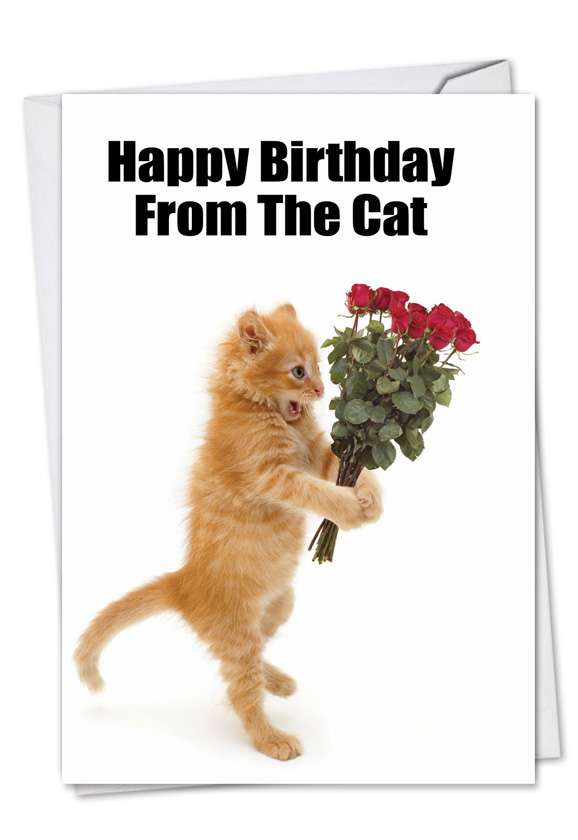 Birthday From The Cat: Humorous Birthday Printed Card