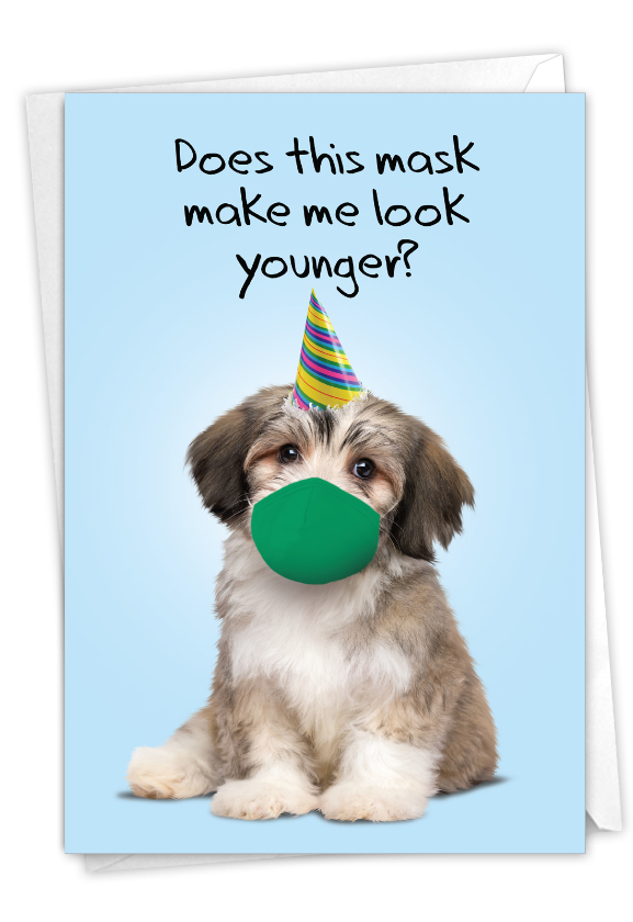 Masked Dogs - Shih Tzu: Funny Birthday Paper Card