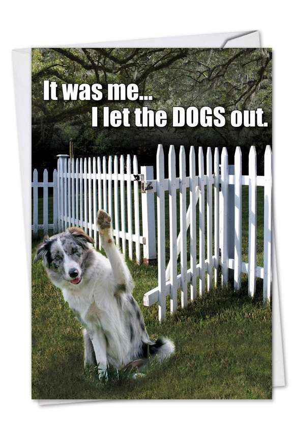 Let Dogs Out: Humorous Birthday Printed Greeting Card