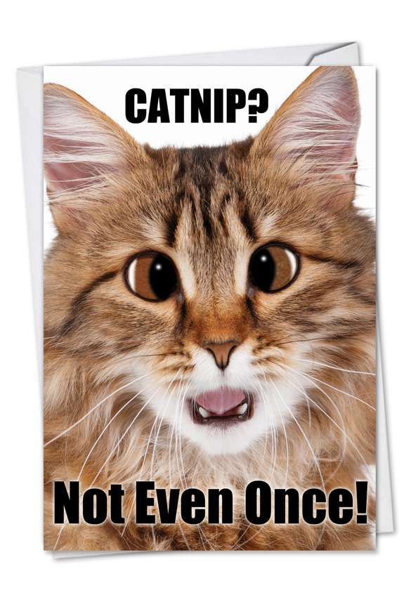 Catnip Not Even Once: Hilarious Birthday Greeting Card