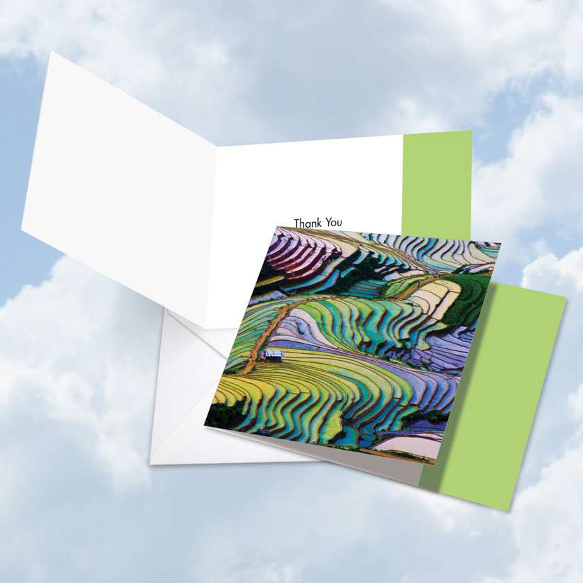 Prismatic Rice Paddies: Creative Thank You Square-Top Printed Card
