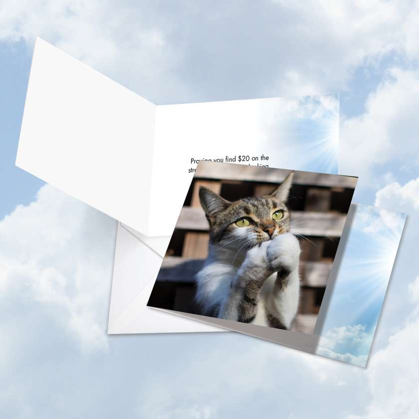 Paws and Prayers Twenty Bucks: Funny All Occasions Square-Top Printed Greeting Card