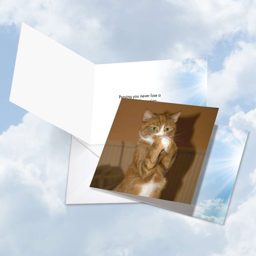 Paws and Prayers Sneeze: Humorous All Occasions Square-Top Greeting Card