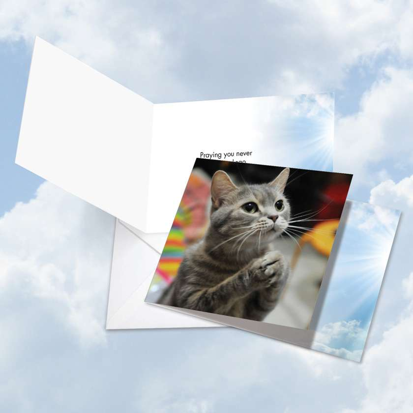 Paws and Prayers Lego: Humorous All Occasions Square-Top Paper Card